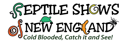 Reptile Shows of New England Logo