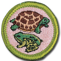 Boy Scouts Reptile and Amphibian Study merit badge